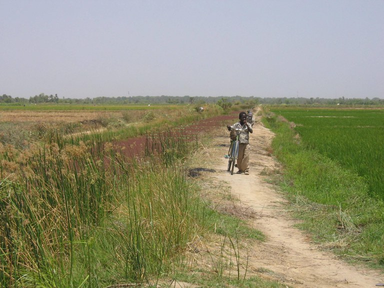 2005-3-bko-office-du-niger-pvw-030_web.jpg