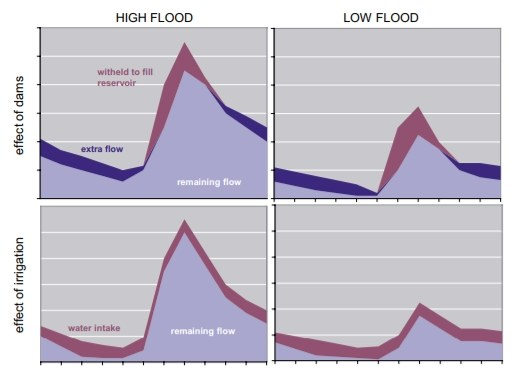 Visualisation hydrological effects on river flow.jpg
